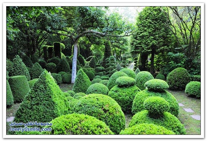 صور لترتيب الحدائق وتنسيقها