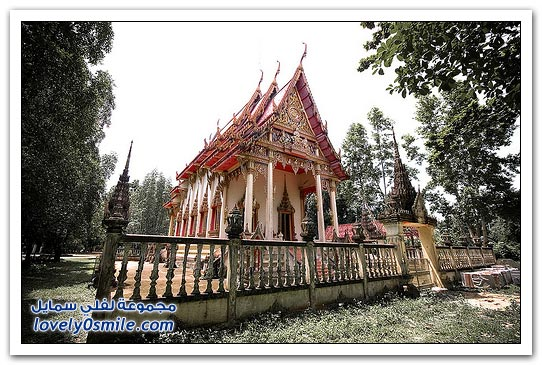 Phuket-Forum-couples-for-honeymoon-11.jpg