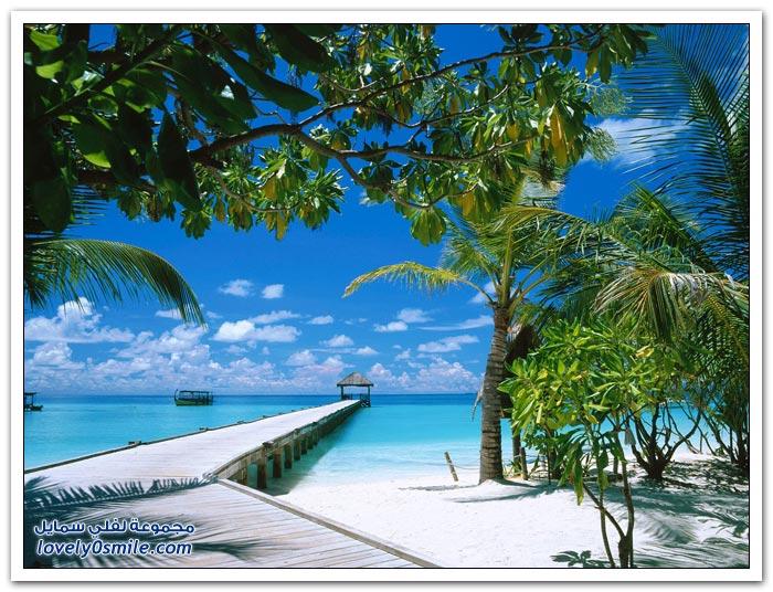 Phuket-Forum-couples-for-honeymoon-22.jpg