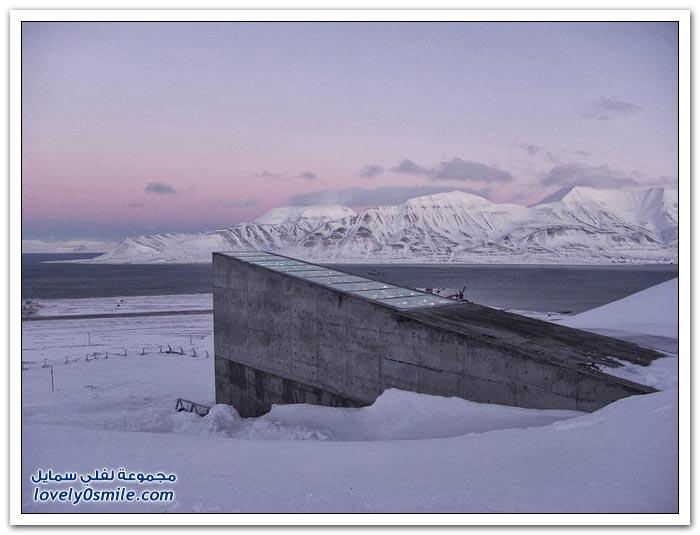 قبو سفالبارد النرويجي يحفظ البذور من الانقراض