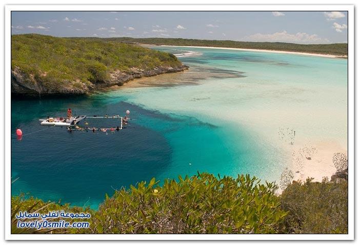 أعمق حفرة زرقاء في العالم في جزر البهاما