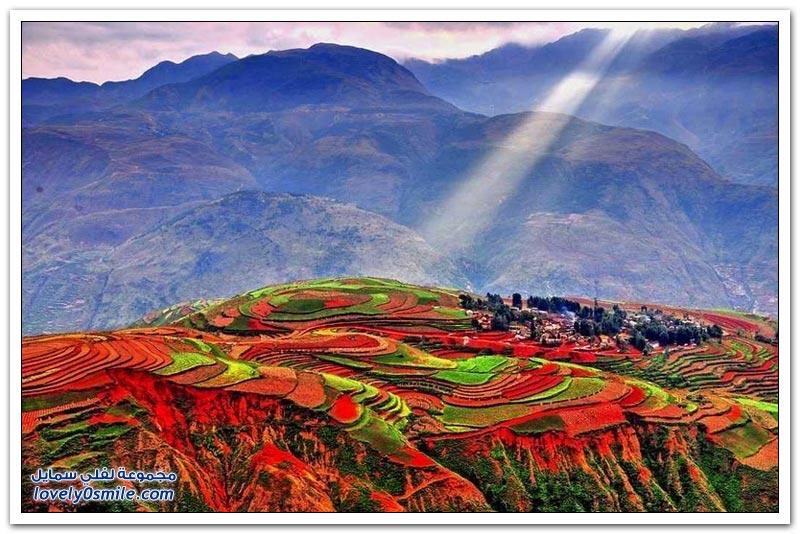 صور رائعة لمدرجات هونج هانى الصينية