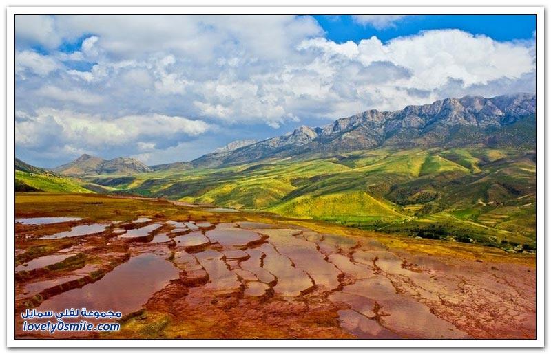 المدرجات الطبيعية في محافظة مازندران في شمال إيران