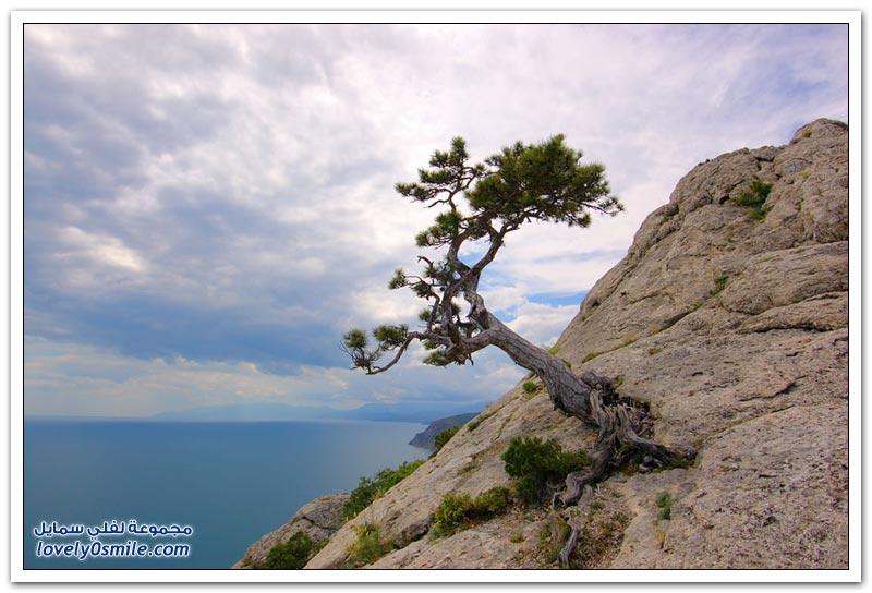 المناظر الطبيعية في شبه جزيرة القرم