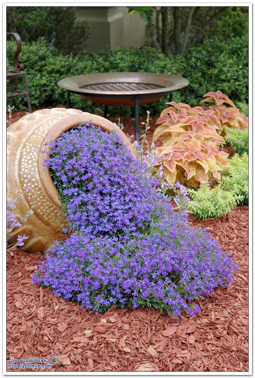 Image Result For Home Garden Pictures