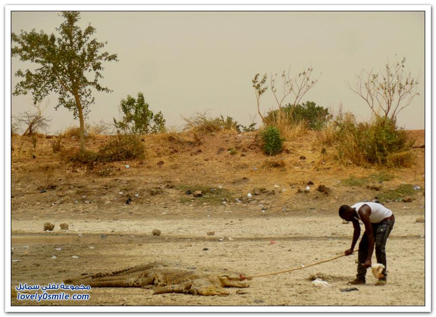 قرية التماسيح في بوركينا فاسو