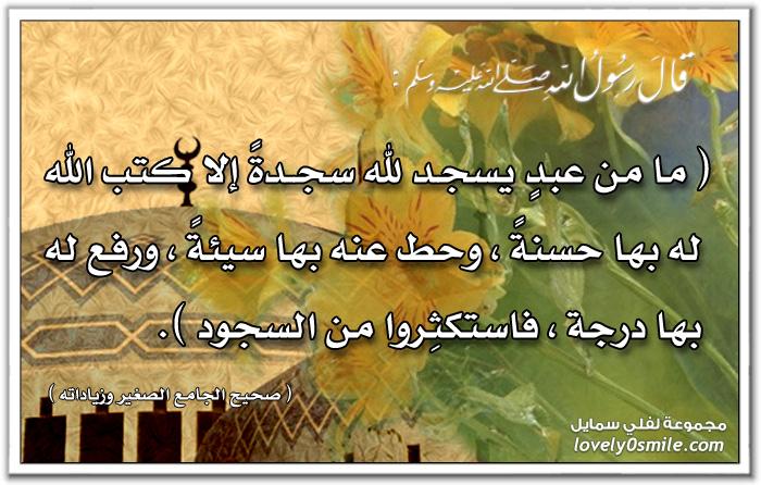 ما من عبد يسجد لله سجدة إلا كتب الله الله له بها حسنة وحط عنه بها سيئة ورفع له