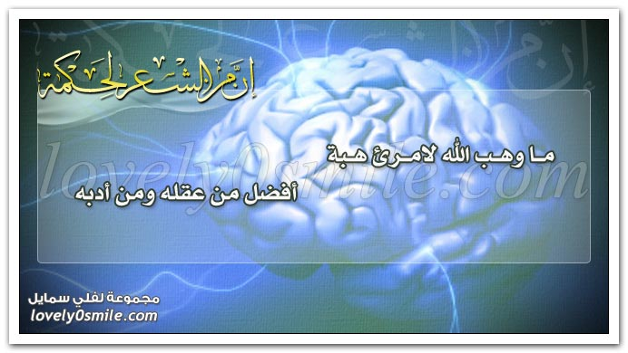 ما وهب الله لامرئٍ هبة أفضل من عقله ومن أدبه