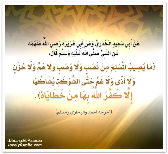 ما يُصيب المسلم من نصب ولا وصب ولا هم ولا حزن ولا أذى ولا غم حتى الشوكة يُشاكها إلا كَفّرَ الله