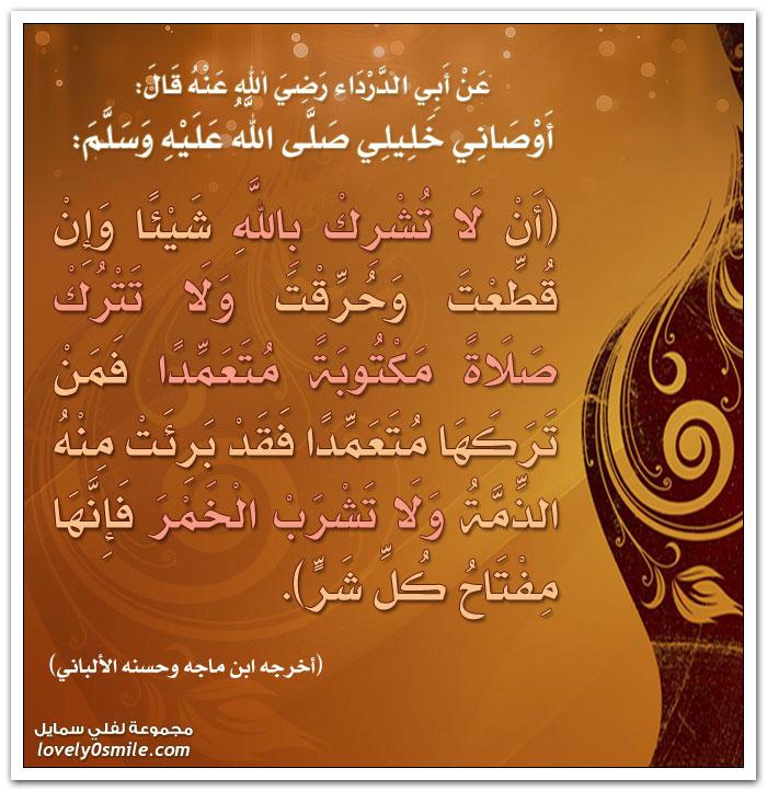 أوصاني خليلي صلى الله عليه وسلم: أن لا تشرك بالله شيئاً وإن قُطِعتَ وحُرِقتَ ولا تترك صلاة مكتوبة